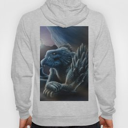 The sorceress and the dragon Hoody