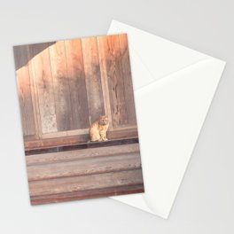 Cat, Kyushu, Temple Stationery Cards