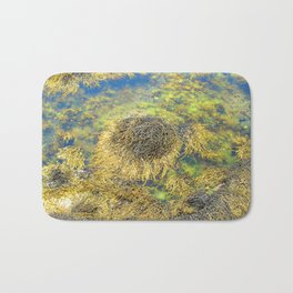 Watercolor Algae, Bladder Wrack 03, Nova Scotia, Canada, Above the Tide Bath Mat
