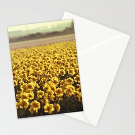 Narcissus field #2 Stationery Cards