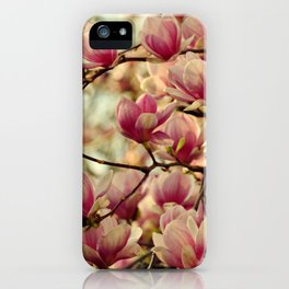PRETTY PINK MAGNOLIAS IN THE LATE AFTERNOON SPRING SUNSHINE iPhone Case