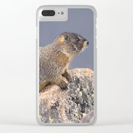 Watercolor Marmot 19, Rocky Mountain National Park, Over Yonder Clear iPhone Case