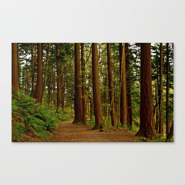 On Mt Tabor Canvas Print