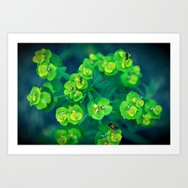 Green rhapsody Art Print
