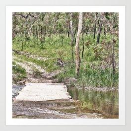 Rustic water crossing Art Print