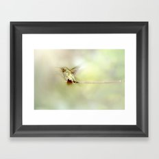 Settle Framed Art Print