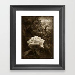 Pink Roses in Anzures 5 Antiqued Framed Art Print