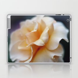 Apricot Rose Laptop & iPad Skin