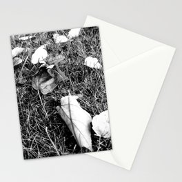 NATURE ART 3 Stationery Cards