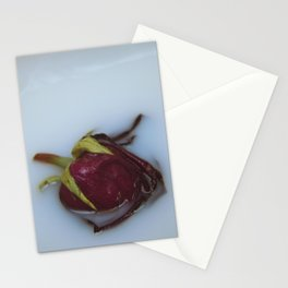 Rose Aesthetic Stationery Cards