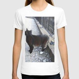 Railway Cat Observing T-shirt