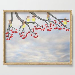 cedar waxwings and crabapples Serving Tray