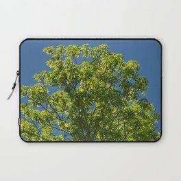 Summer Ash Tree in Crystal Blue Sky Laptop Sleeve