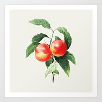 peach Art Prints featuring Peach by Grace