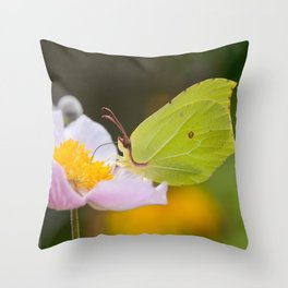 Yellow butterfly on a flower Throw Pillow