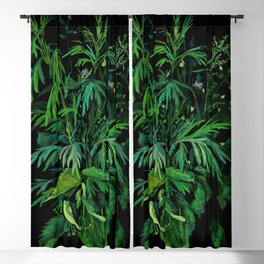 Summer Greenery, Green & Black Blackout Curtain