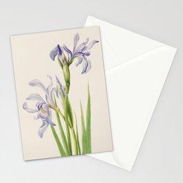 Iris Watercolor Vintage Botanical Print, Mary Vaux Walcott Stationery Cards