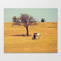 cuba Canvas Prints featuring cuba by Pamela Forster