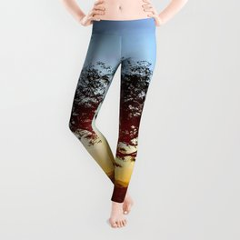 Lonely tree on the field Leggings