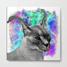 Caracal Wild Cat Metal Print