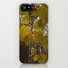 Fall In The Forest. iPhone Case