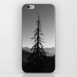 Black Tree in the Mountains iPhone Skin