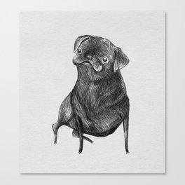 Le Carlin Noir Canvas Print