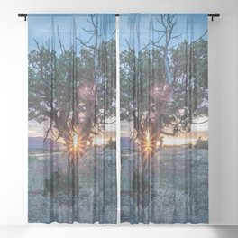 Sun Tree Hammock // Grainy Night Sunset Rays Hiking Landscape Photograph Wilderness Beauty Sheer Curtain