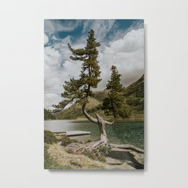 Rooted Tree down the riverside | Obersee Austria | Austrian mountains and clouds | Nature Wall Art  Metal Print