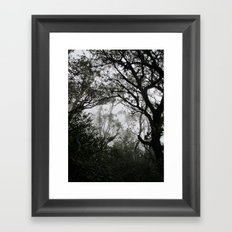A Walk in the Clouds #2 Framed Art Print