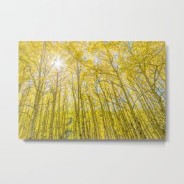 Nevermind The Trees Metal Print