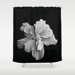 Hibiscus Drama - Black and Grey Shower Curtain