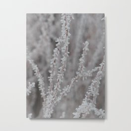 Frosty Branches Metal Print
