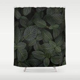 Fittonia Shower Curtain