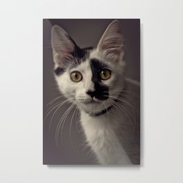 Lucifer Sam Metal Print