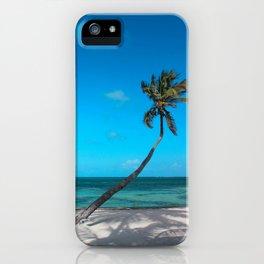 San Pedro Palm iPhone Case