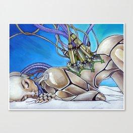 Bandolier Canvas Print