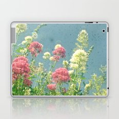 Raspberries and Cream Laptop & iPad Skin