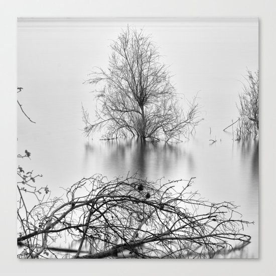 """Peace Tree"". Sunrise at the lake Canvas Print"