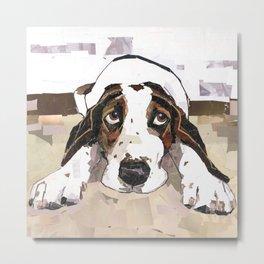 Bubba The Hound Dog Metal Print