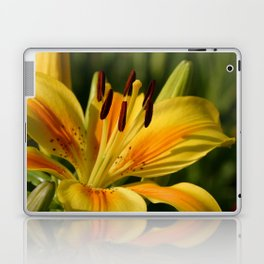 Beautiful Yellow Lily Laptop & iPad Skin