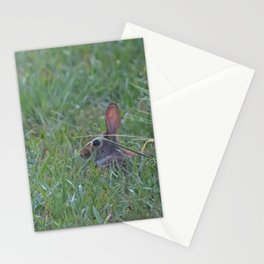 Resting in the Shade Stationery Cards