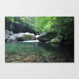 Midnight Hole in Great Smoky Mountains National Park Canvas Print