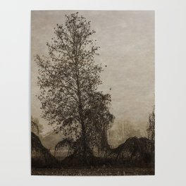 barren tree in the fog Poster