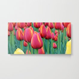 Tulips Red and Yellow Metal Print