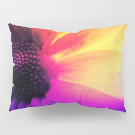 Floral Infusion Pillow Sham