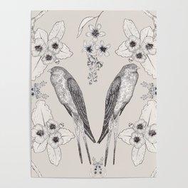 Summer Swallow Poster