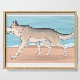 Husky run on the beach 04 Serving Tray