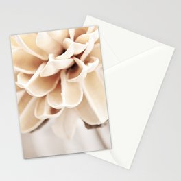 Cream Beige Flower Photography, Light Brown Pale Neutral Nature, Floral Botanical Stationery Cards