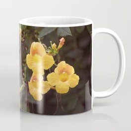 Longwood Gardens Autumn Series 199 Coffee Mug